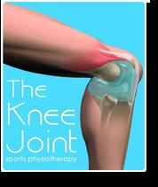 kneejoint-logo
